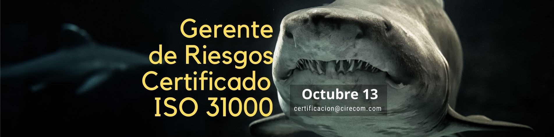 Gerente de Riesgos ISO 31000 Octubre 13